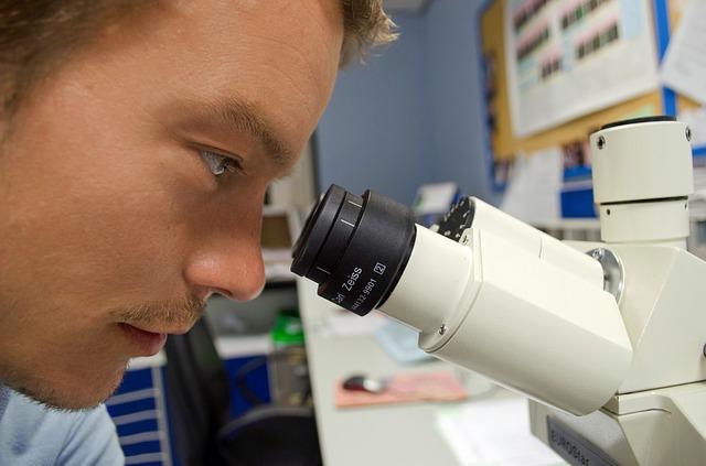 Las células madre uterinas regeneran córneas ulceradas