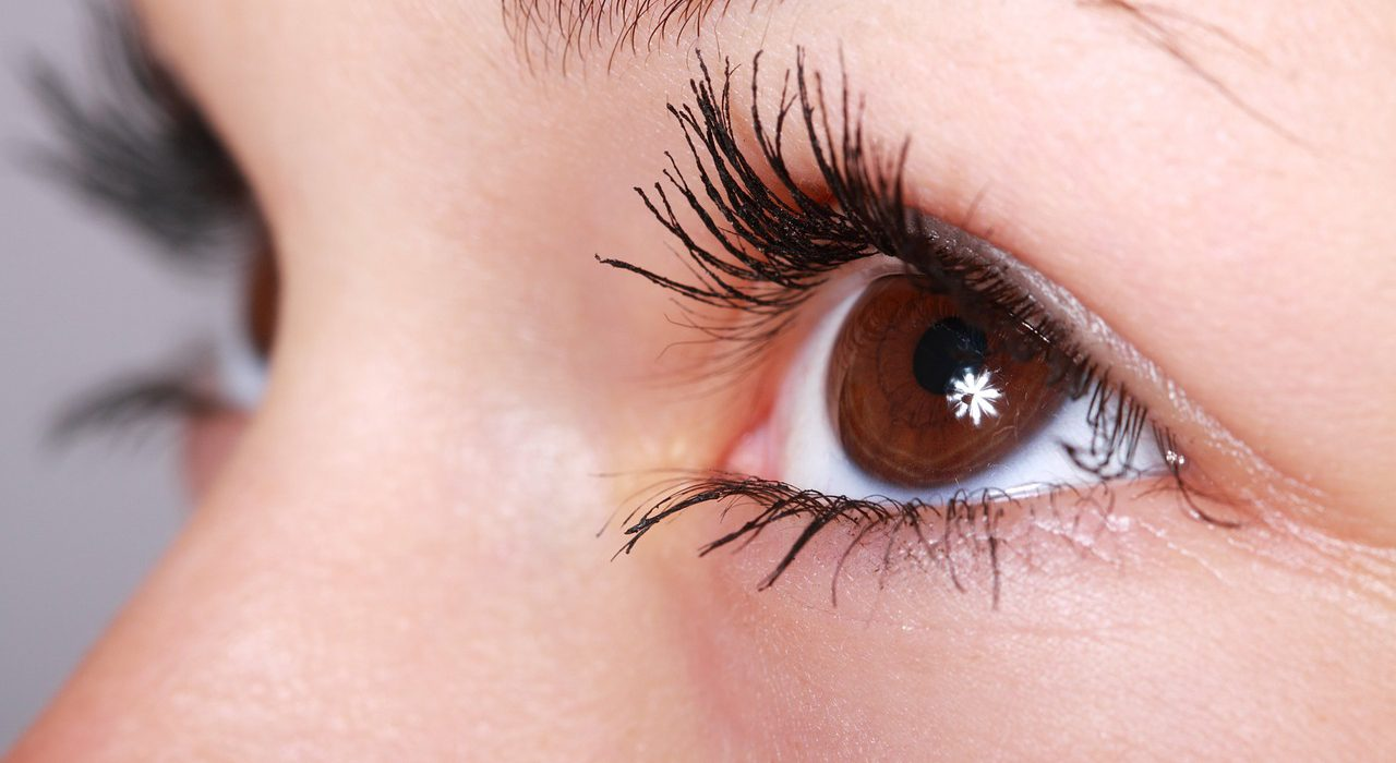 Scleral contact lenses support: a new concept in expansion