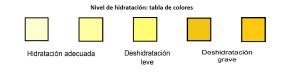 tabla-hidratacion-orina-