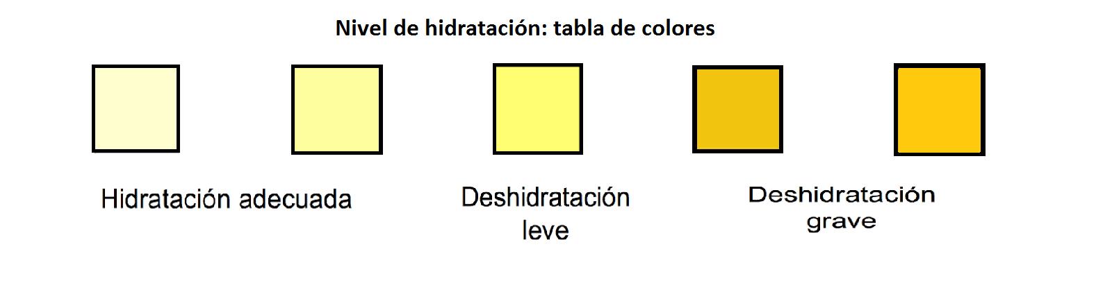 Resultado de imagen de color orina hidratacion
