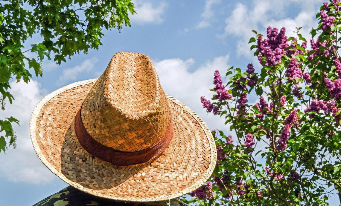 Nutrientes naturales que protegen la piel del sol