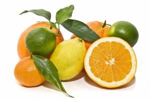 Naranjas y citricos variados