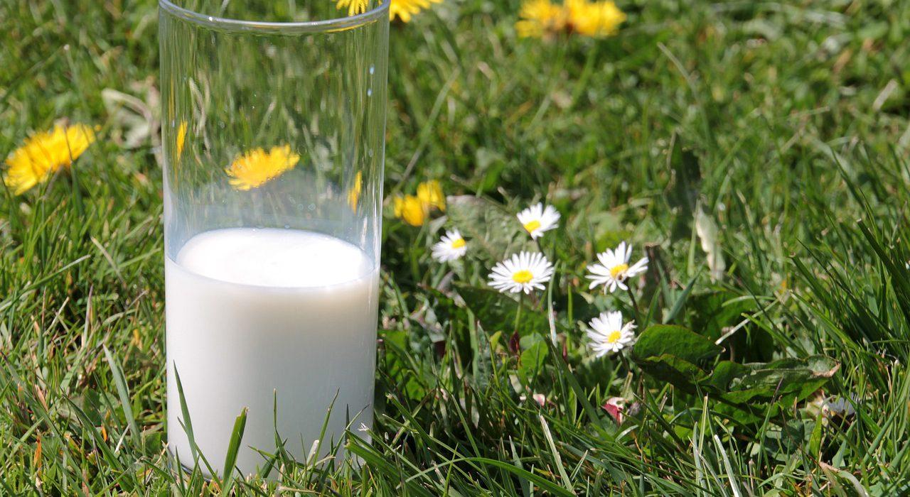La lactosa: aspectos clave que debemos saber