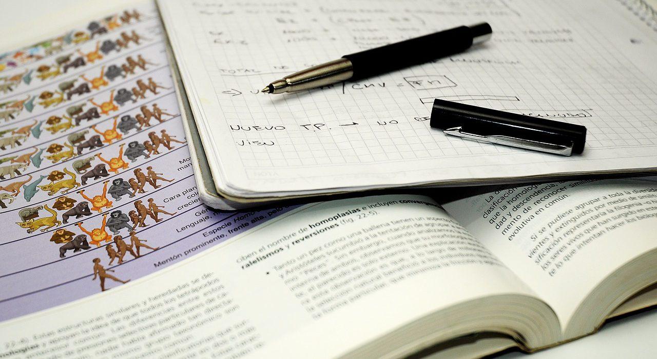 Frena el estrés en los estudios con agua de mar