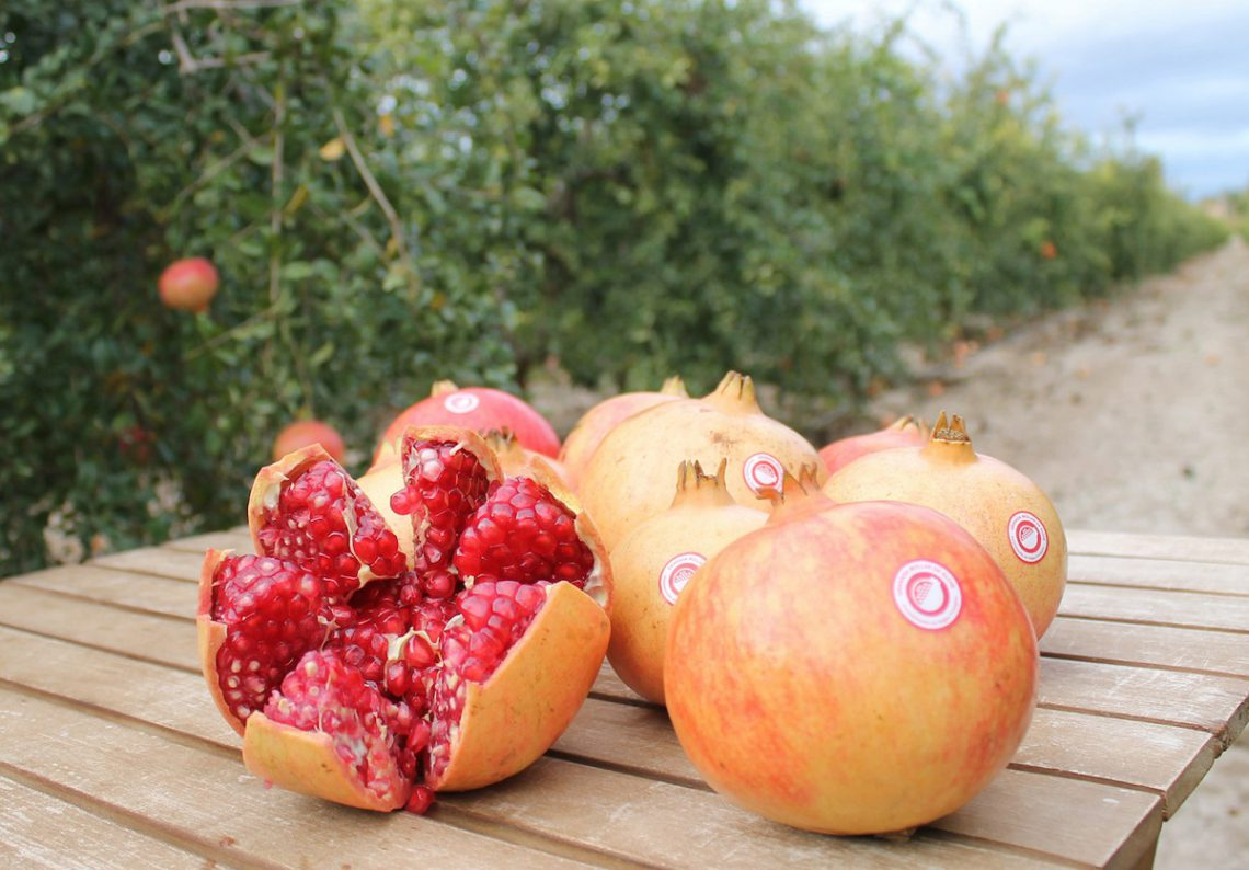 Everything about the pomegranate: properties and benefits