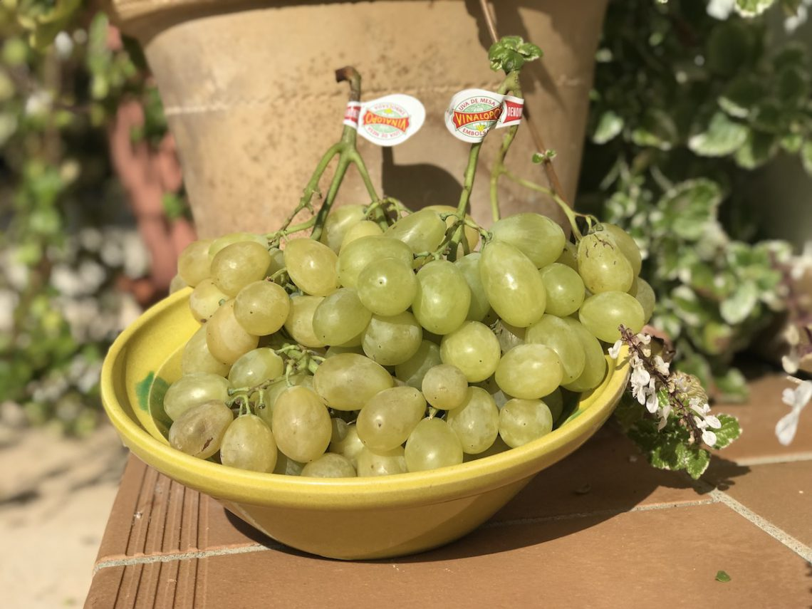 Bagged grapes with skin and pips